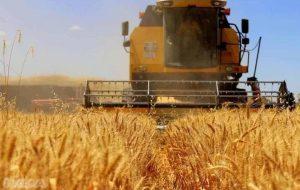 Tarım-ÜFE arttı