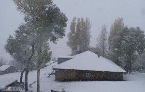 Muş'a mevsimin ilk karı düştü